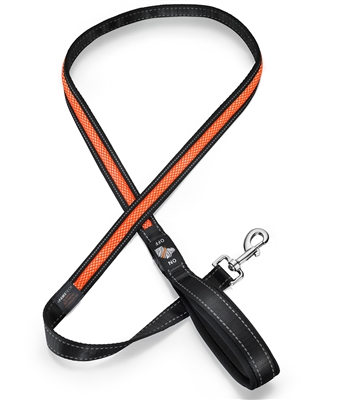 orange led dog leash