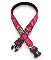 red dog collar with reflective stitching