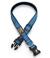 blue dog collar with reflective stitching
