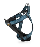 teal padded dog harness with reflective stitching