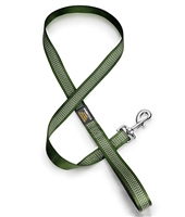green dog leash with reflective stitching