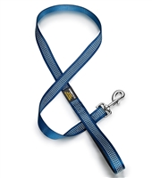 blue dog leash with reflective stitching