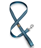 teal dog leash with reflective stitching